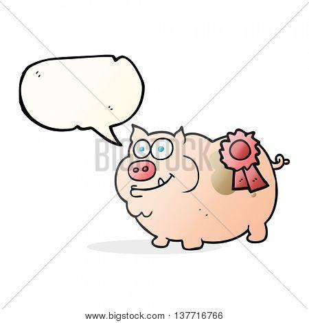 freehand drawn speech bubble cartoon prize winning pig