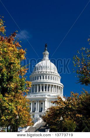 U.s. Capital Building Dome, Washington Dc, Autumn Yellow Leaves