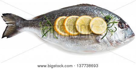 Top view of one fresh dorada fishes with lemon isolated on white background.