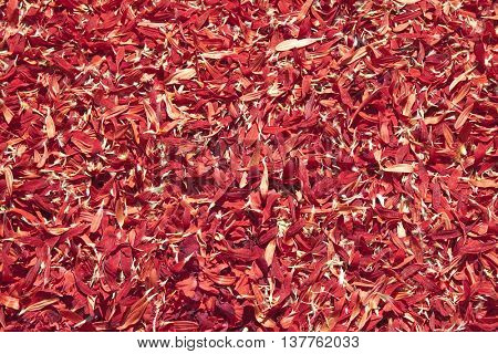 Red petals. Usable as a background