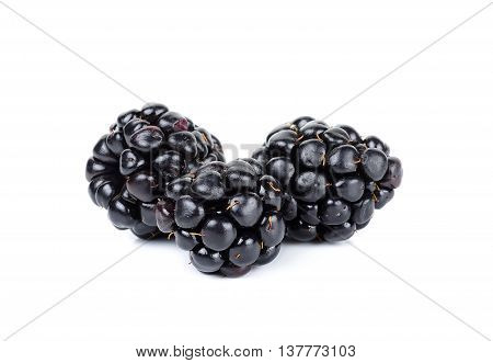 Blackberry Isolated On The White Background