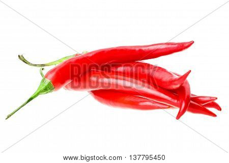 red chilli vegetable Isolated on white background