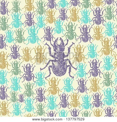 Vector illustrated seamless stag-beetle pattern. Colorful engraved stag-beetle on white background