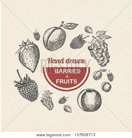 Collection of hand drawn Fruits and Berries isolated on grunde background. Vector vintage sketch style illustration.