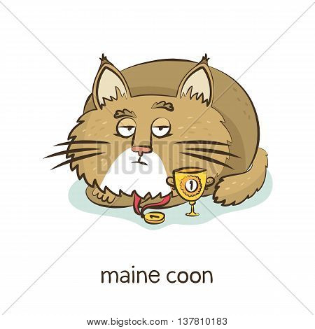 Maine Coon. Cat Character Isolated On White