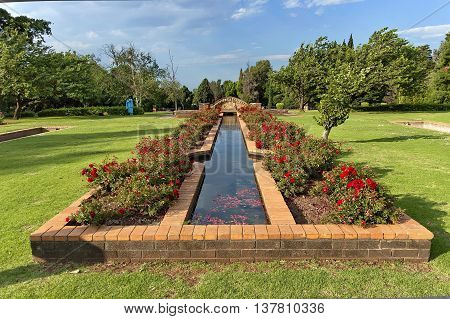 Fragment of rosarium with pond in Johannesburg Botanical Garden, South Africa