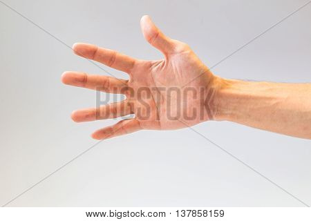 Closeup of the human hand on gray background