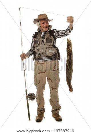 Senior fisherman with big fish - burbot, codfish (Lota lota) isolated on white