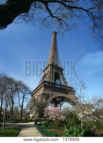 Calm Sunny Eiffel Tower View - France