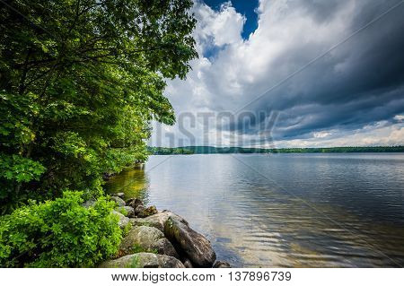Rocks And Trees On The Shore Of Massabesic Lake, In Auburn, New Hampshire.