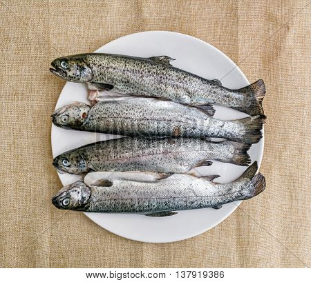 Tasty grilled trout. Food theme. International cuisine. Fish specialties.