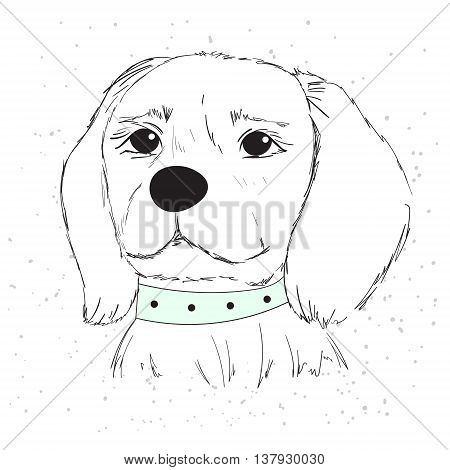 Vector illustration of a cute dog with a blue collar for postcards T-shirt and other apparel.