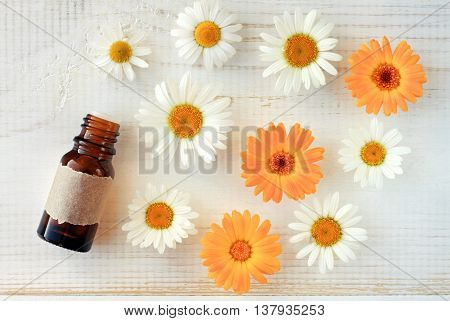 Essential oil, herbal extract bottle with empty paper label, fresh white chamomile and orange calendula flowers, top view. Focus on bottle.