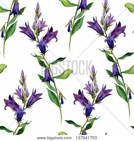 seamless pattern with watercolor drawing blue bell flowers, painted wild plants, botanical illustration in vintage style, color floral background, hand drawn nature backdrop poster