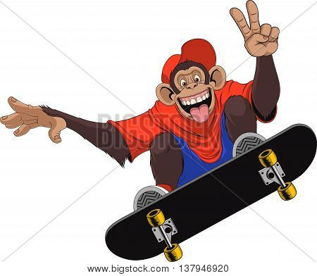Vector illustration of funny monkey chimp rides a board skateboard