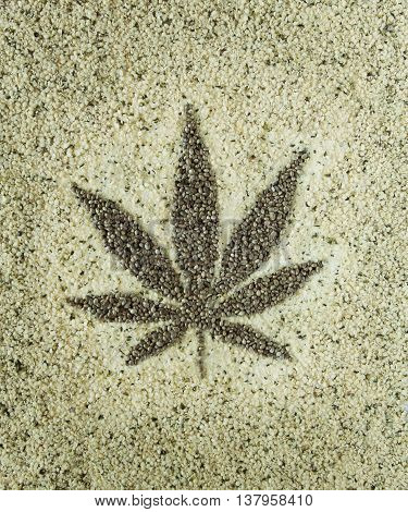 cannabis hemp seeds leaf close up background