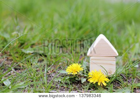 concept of a wooden house on a plot with grass and flowers