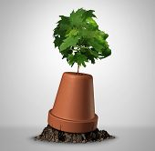 Human determination psychology concept and the power of perseverance as a sapling tree shaped as a head growig out of an upsidedown flower pot as a motivation symbol for recovery with 3D illustration elements. poster