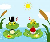 Bride and Groom Frogs Cartoon Characters On A Leafs In Lake poster