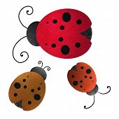 cute red ladybug with black spots and texture, isolated on white background poster