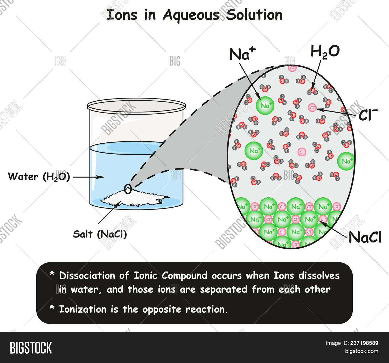 Ions Aqueous Solution Image & Photo (Free Trial)   Bigstock