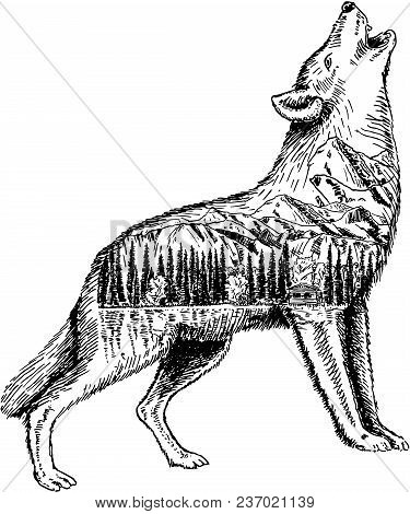Stylized Howling Wolf With Nature Landscape. Vector Ink Hand Drawn Illustration Isolated On White Ba