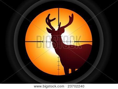 Hunting A Deer