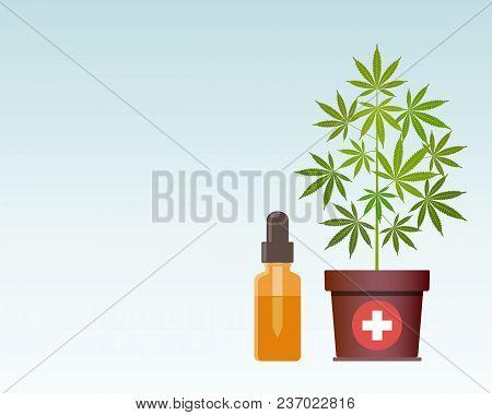 Marijuana Plant And Dropper With Cbd Oil. Cannabis Oil. Medical Marijuana. Cbd Oil Hemp Products. Oi
