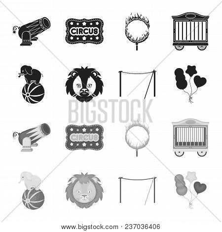Elephant On The Ball, Circus Lion, Crossbeam, Balls.circus Set Collection Icons In Black, Monochrome