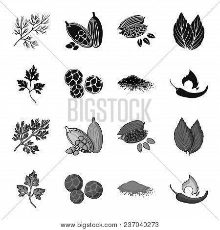 Ptrushka, Black Pepper, Paprika, Chili.herbs And Spices Set Collection Icons In Black, Monochrome St