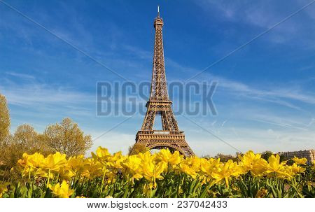 Spring In Paris, France, The Eiffel Tower With A Vibrant Blue Spring Sky With Yellow Flowers In Fore
