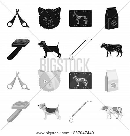 Dog, Cow, Cattle, Pet .vet Clinic Set Collection Icons In Black, Monochrome Style Vector Symbol Stoc