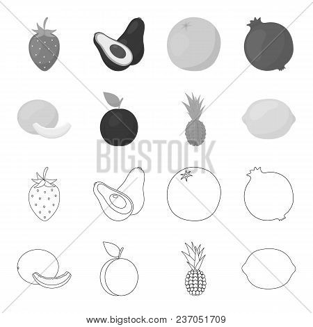 Melon, Plum, Pineapple, Lemon.fruits Set Collection Icons In Outline, Monochrome Style Vector Symbol