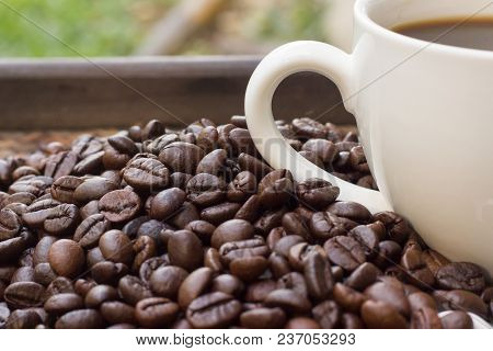 Coffee Beans With White Coffee Mug Blur Background, A Cup Of Hot Coffee Is Placed Beside The Coffee