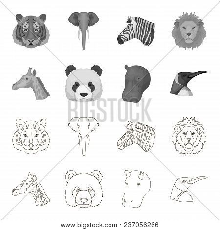 Panda, Giraffe, Hippopotamus, Penguin, Realistic Animals Set Collection Icons In Outline, Monochrome