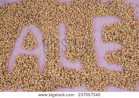 The Inscription Of Ale With Malt Grains On A Lilac Textile Background. Craft Beer Brewing From Grain
