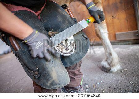 A Blacksmith Works On A Horse Hoof
