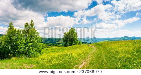 Country Road Through Grassy Meadow On Hillside. Beautiful Summer Scenery Of Carpathian Mountains. Go