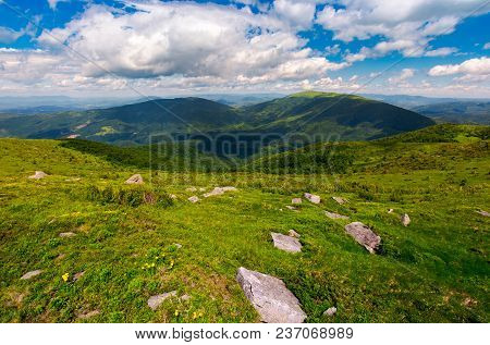 Carpathian Alps With Huge Boulders On Hillsides. Beautiful Summer Landscape On Overcast Day. Locatio