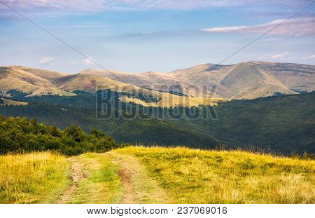 Country Road Through Grassy Hillside. Lovely Summer Scenery Of Carpathian Mountains. Svydovets Mount