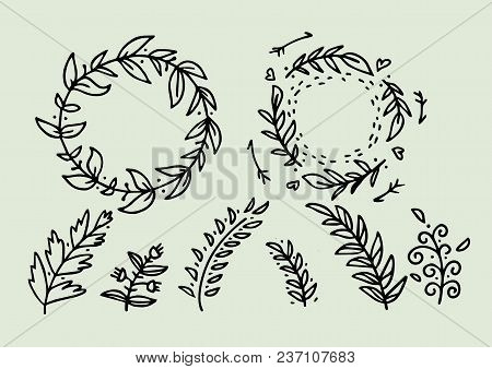 Florals, Calligraphic Elements Hand Sketched Elements. Ampersands And Catchwords, Bursting Rays, Wre