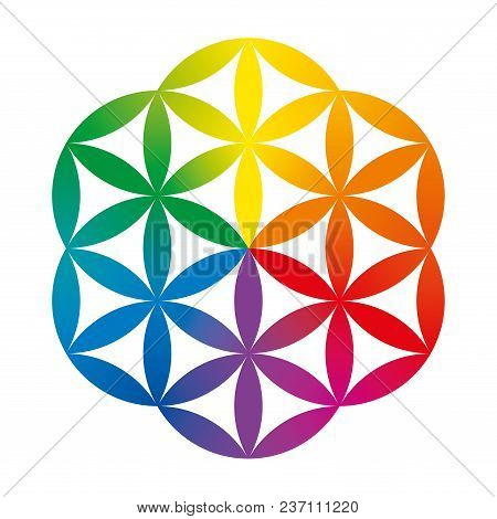Rainbow Colored Half Of A Flower Of Life. Geometrical Figure Composed Of Multiple Overlapping Circle