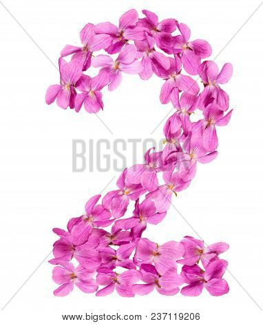Arabic Numeral 2, Two, From Flowers Of Viola, Isolated On White Background