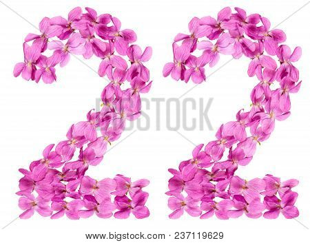 Arabic Numeral 22, Twenty Two, From Flowers Of Viola, Isolated On White Background