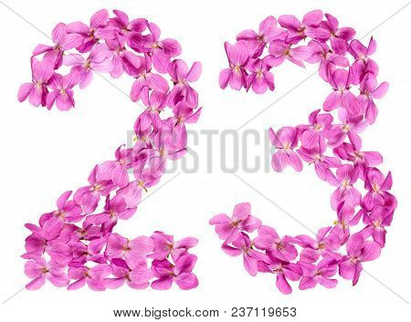 Arabic Numeral 23, Twenty Three, From Flowers Of Viola, Isolated On White Background