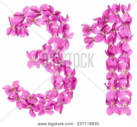 Arabic Numeral 31, Thirty One, From Flowers Of Viola, Isolated On White Background