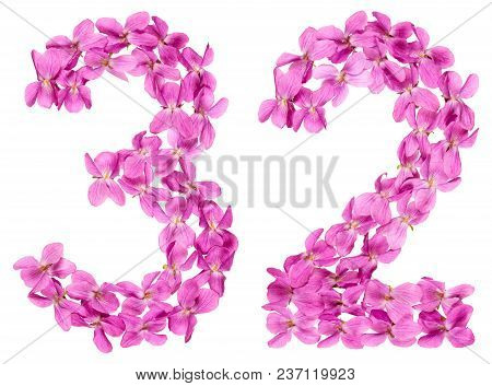 Arabic Numeral 32, Thirty Two, From Flowers Of Viola, Isolated On White Background