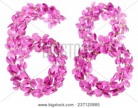 Arabic Numeral 68, Sixty Eight, From Flowers Of Viola, Isolated On White Background