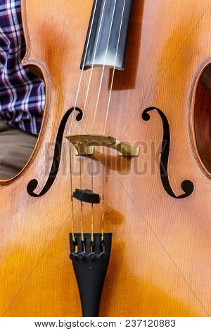 Close Up Of An Upright Bass In Kotor
