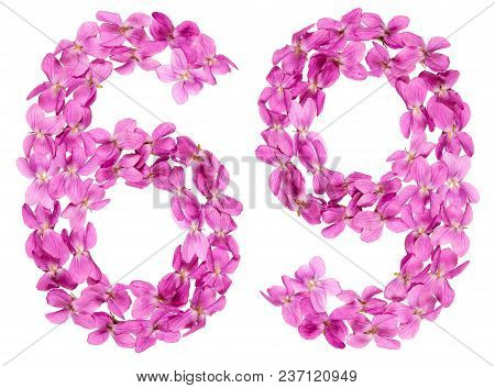 Arabic Numeral 69, Sixty Nine, From Flowers Of Viola, Isolated On White Background